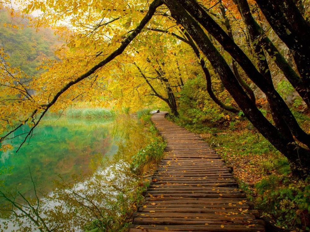 Plitvice Lakes Nature Etno Garden Plitvice Lakes Croatia 2020 08