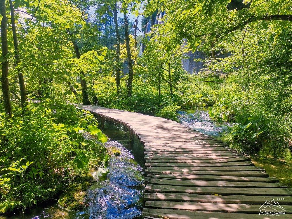 Plitvice lakes Nature 007