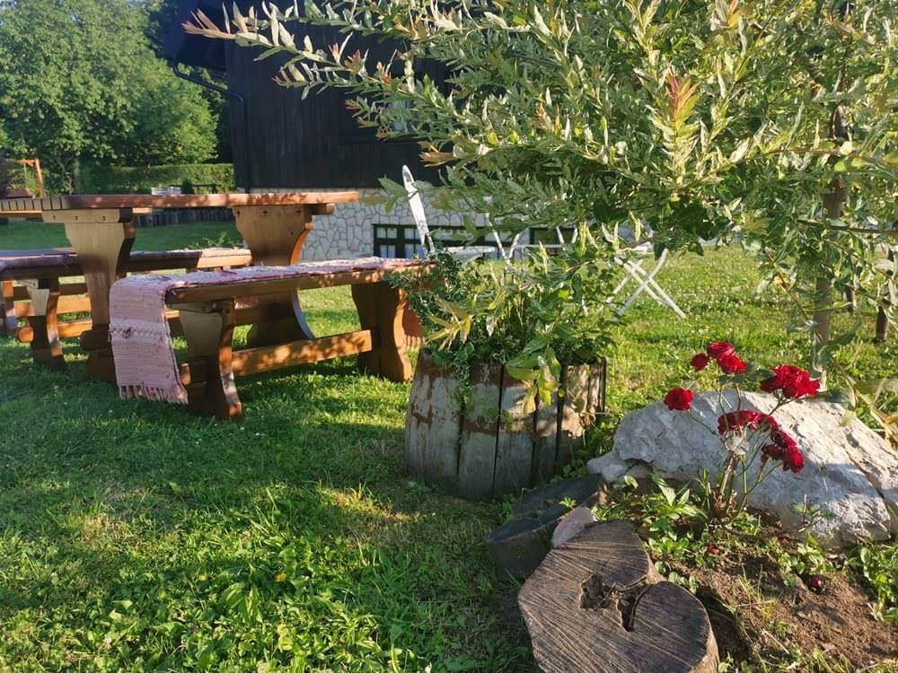 Ljeto na Plitvičkim jezerima priroda